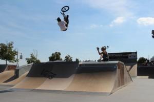 backflip-bus-jeremy-chosson-skatepark-bordeaux-494x329